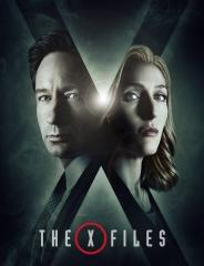 THE X - FILES