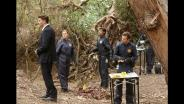 Bones 10- Episodio 16
