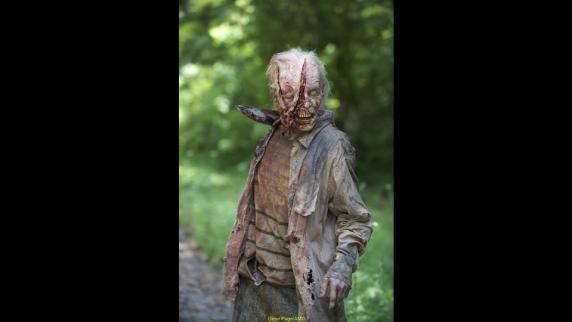 The Walking Dead 6- Zombies